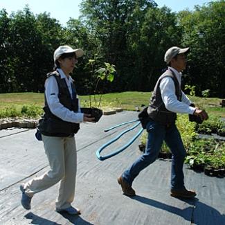 育苗場から植樹する苗を選びます