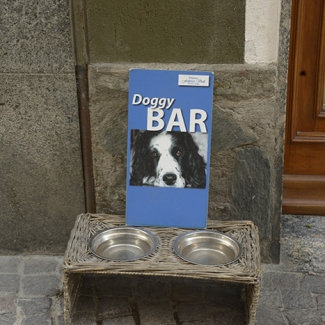 Another Doggy Bar