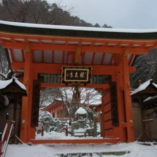 Pilgrimage to the Temple of the Dragon in the year of the dragon.  Ryusenji Temple Gate, one of eight King Dragon temples