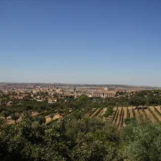 View from Rodolf Mansion Olive groves, vineyards, Toledo