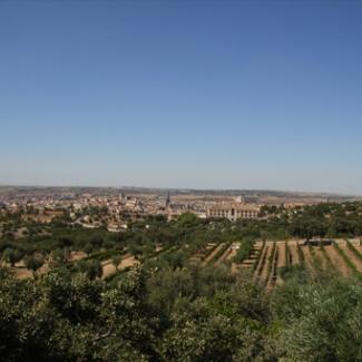 ルドルフ邸から望む 手前からオリーブ畑、ぶどう畑、トレドの街
